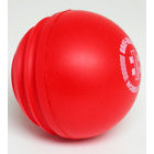 GN Cricket Wobbleball Outdoor
