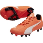 Puma Evospeed 5.4 FG Football Boots
