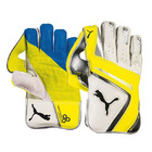 Puma Evospeed 2 WK Gloves