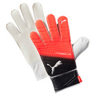 Puma Evopower Grip 4.3 Goalkeeping Glove