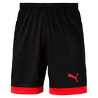 Puma EvoTRG Training Shorts