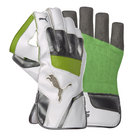 Puma Evopower 3 WK Gloves