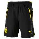 Borussia Dortmund Training Shorts 17/18