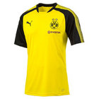 Borussia Dortmund Jnr Training Shirt 17