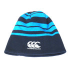 Leinster Rugby Striped Beanie 17/18